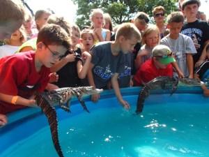 Gator Encounters at World Pet Association's Aquatic Experience – Chicago
