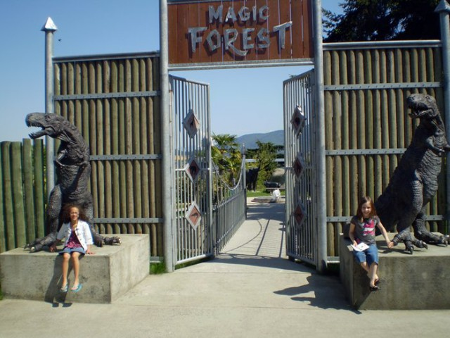 magic forest cougar mountain zoo