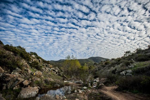 Mission Trails Regional Park- courtesy Ce Helton