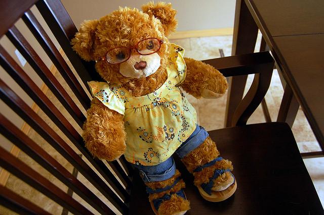 teddy-cc-anna-flickr