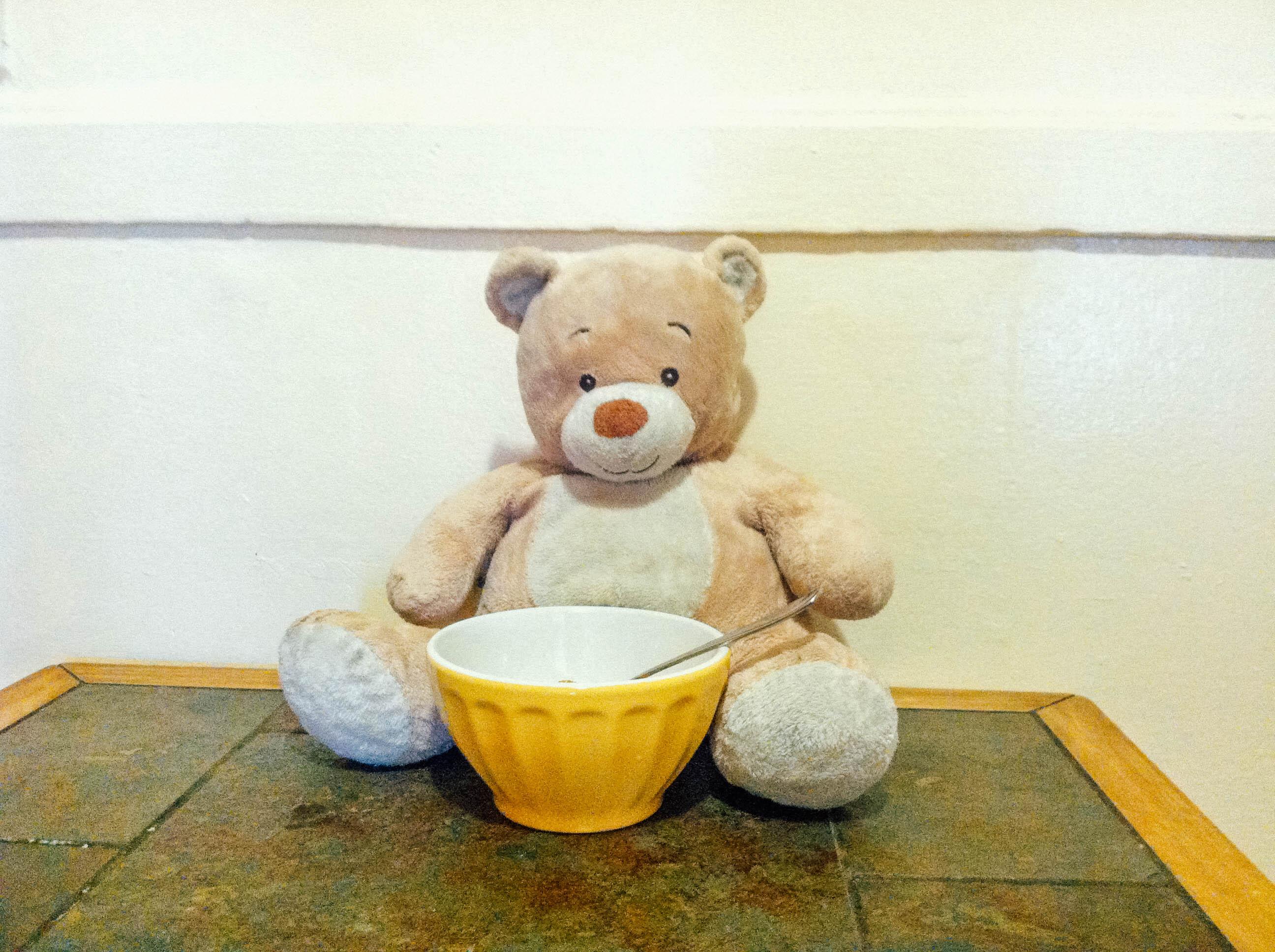 TeddyBear-1-2