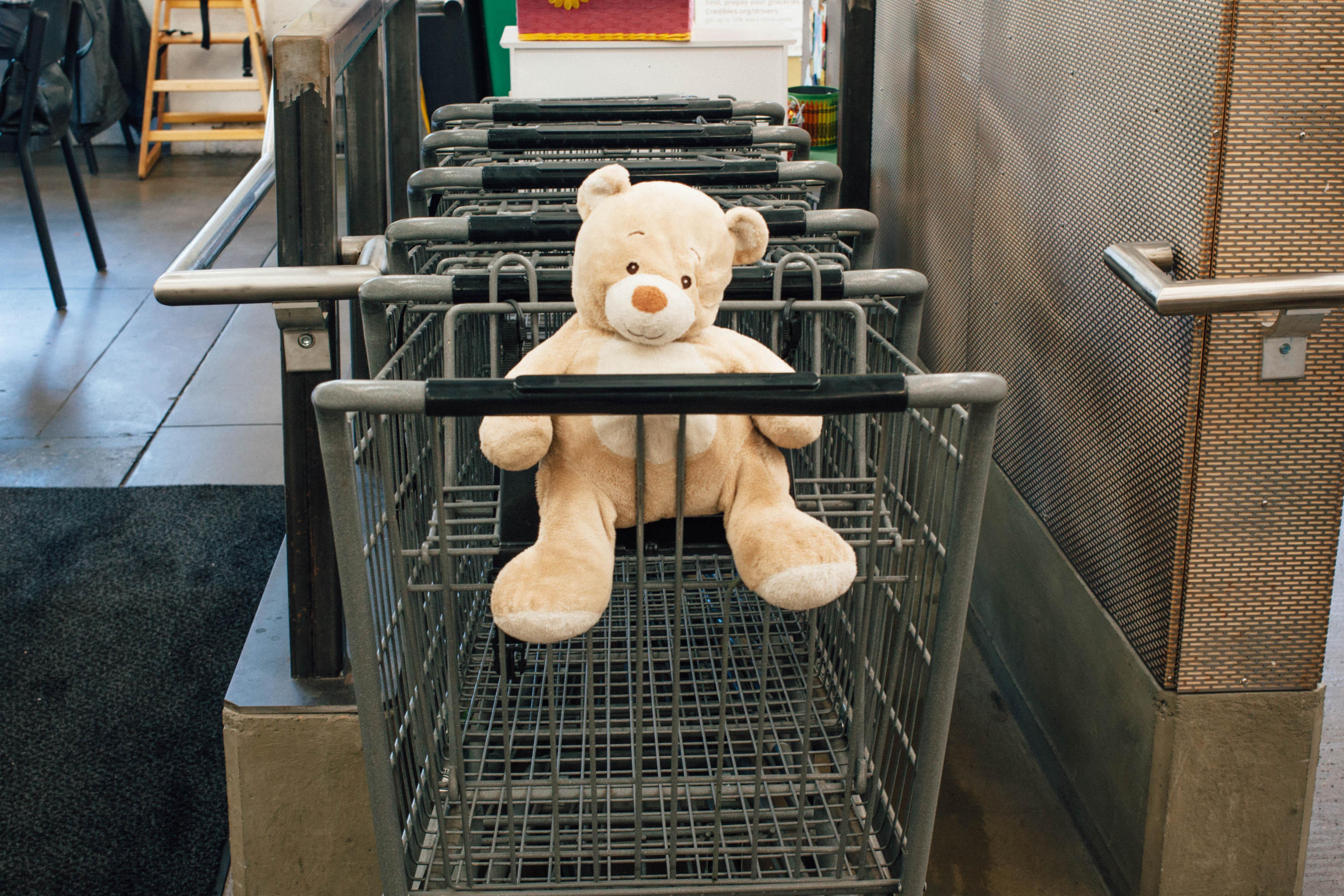 TeddyBear-9