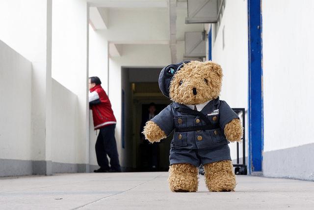 teddybear-cc-longzijun-flickr