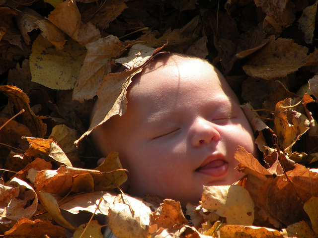 baby fall leaves