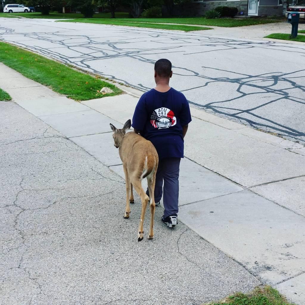 blind deer & 10 y/o boy