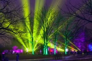 Morton Tree of Lights