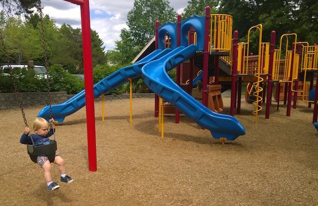 Park at Bothell Landing swings