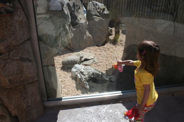 Toddler Activities LA Zoo