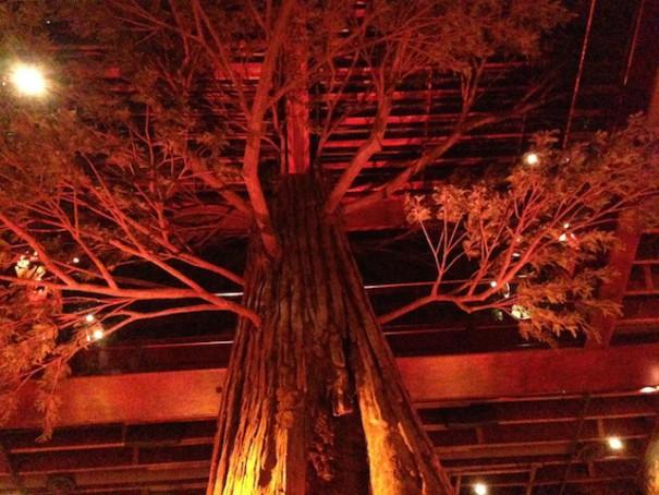 Clifton's Treetop