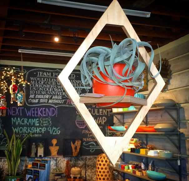 Potted store in Atwater Village: amazing pkants, design for outdoor living and more