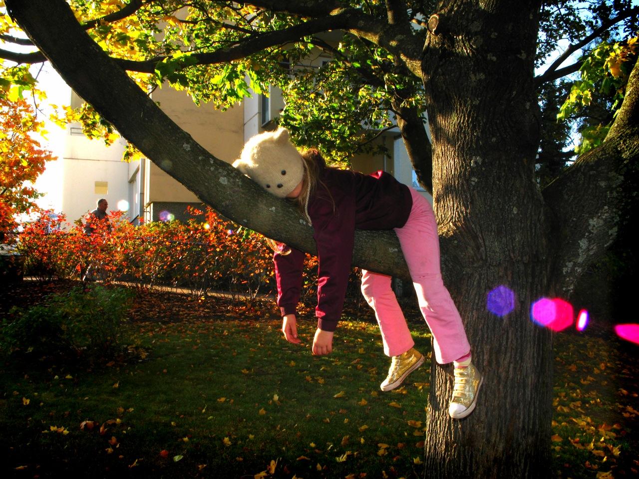 sloth-cc-Risto Kuulasmaa via flickr