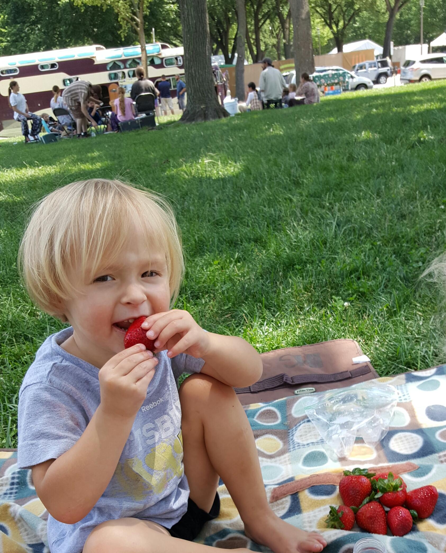 SLR strawberry picnic national mall 092015