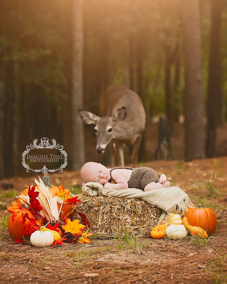 baby/ deer photobomb