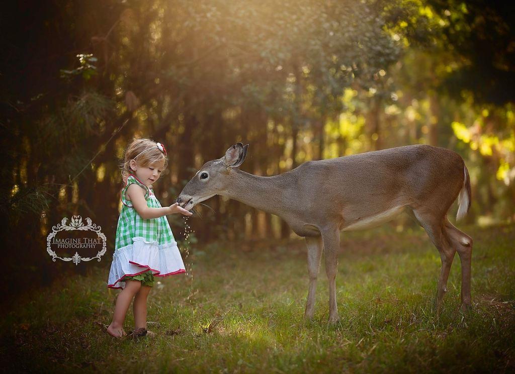 deer photobomb 2