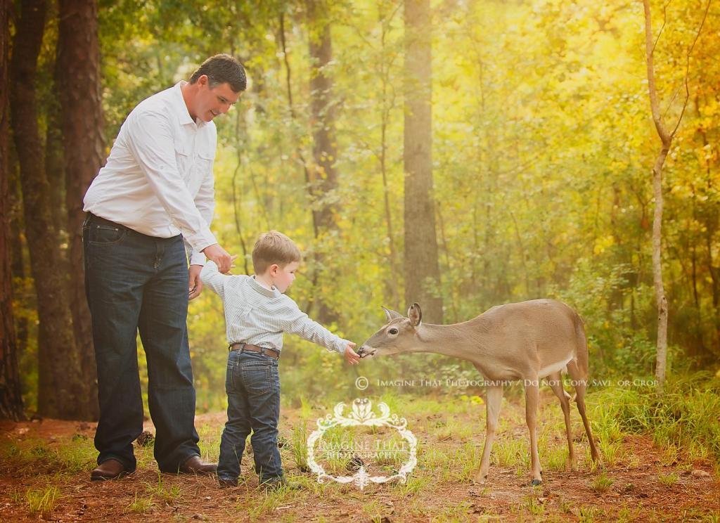 deer photobomb 3