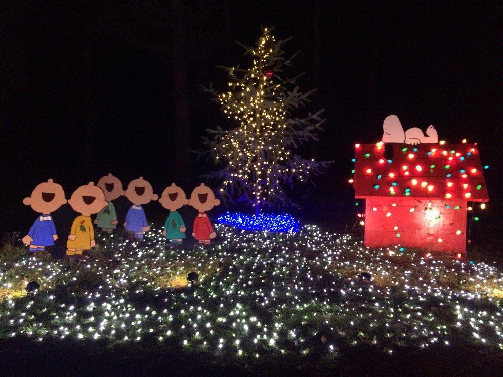 snoopy lights