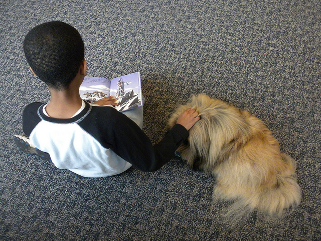 kid reading to a dog