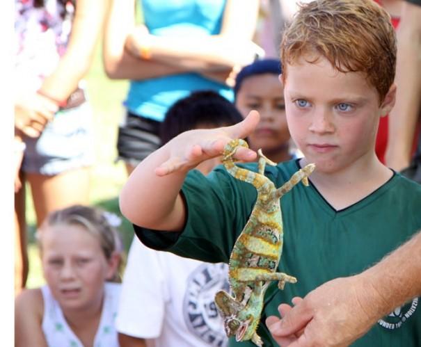 boy-lizard-isadora-taft flickr