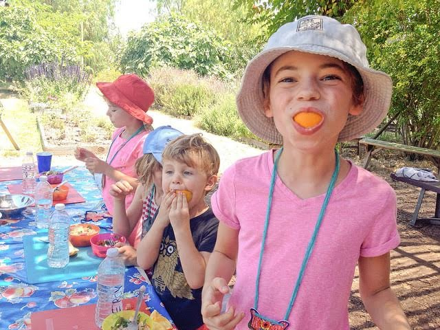 Summer camp in the garden with City Seedlings