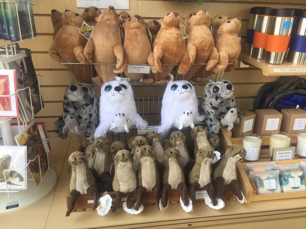 Marine Mammal Care Center gift shop