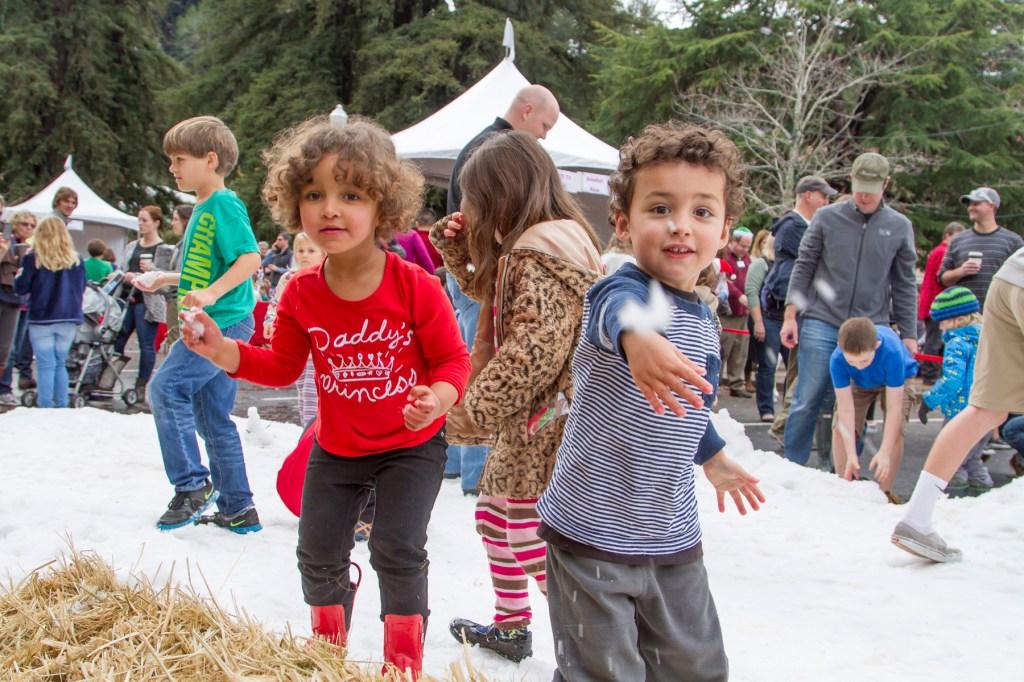 mill valley winterfest