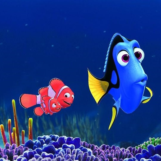 Finding-Dory-ccflickr-LaRealNoticia