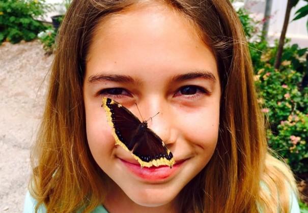 butterfly-farms-vista-2
