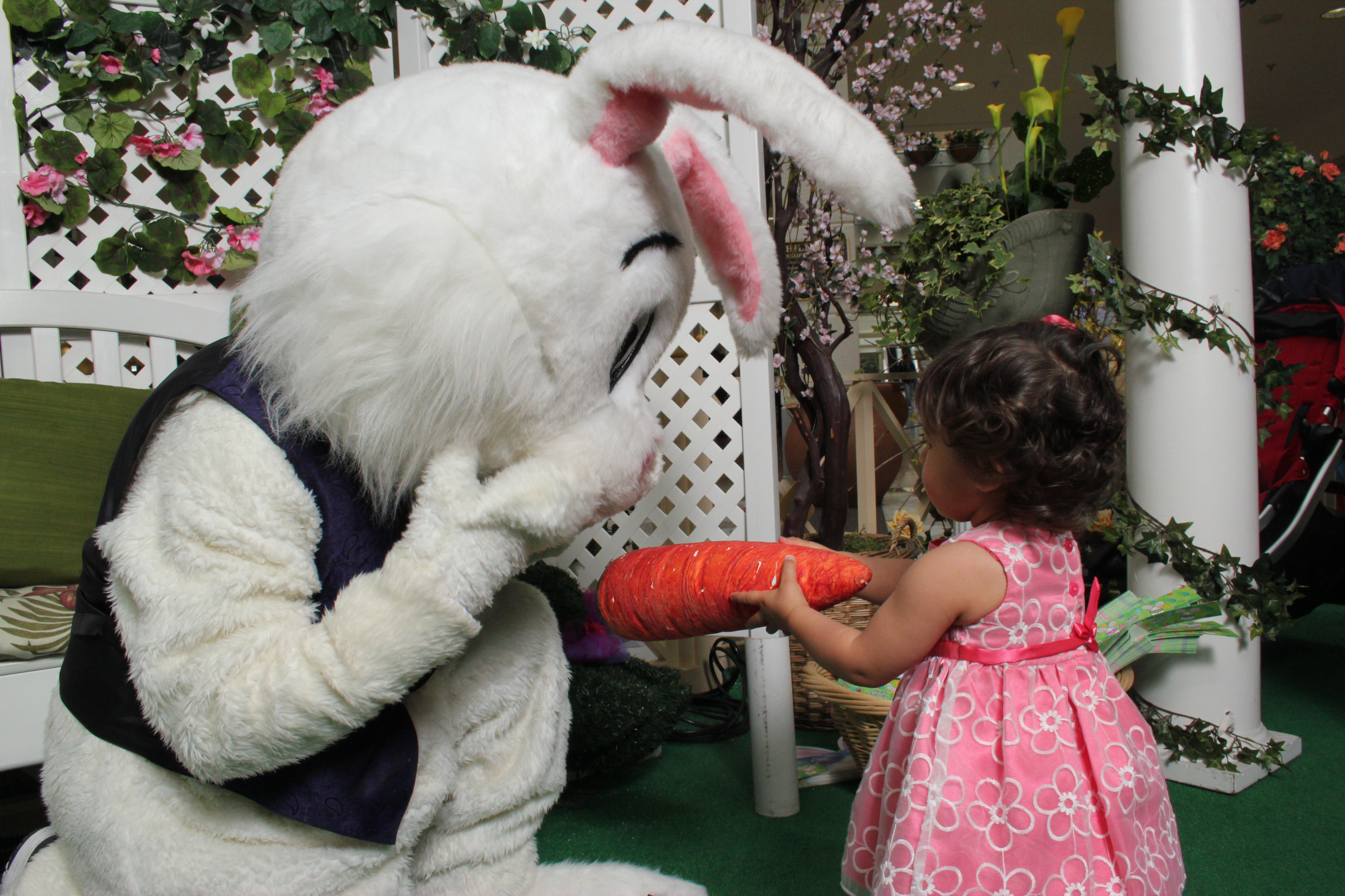 Grab your Easter bonnet or just bring a smile to visit with the Easter Bunny. He'll be nestled in his cozy garden corner and available for photo h-ops with the kids. With a variety of digital photo packages to choose from, parents can capture the moment forever. For more information, and a full schedule, visit hillsdale.com or call the Concierge at 650-571-1029.