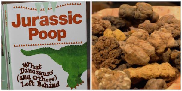 rockhound-book-jurassic-poop