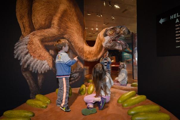 13a. Climbable dinosaur nest_DF_160311_4078