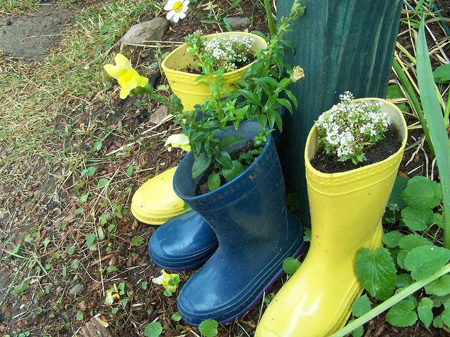 rainboot shoe craft planter
