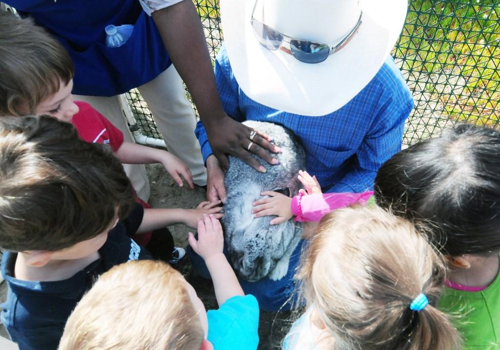 CRDT-kidseaster-32, outdoors, bunnies, petting