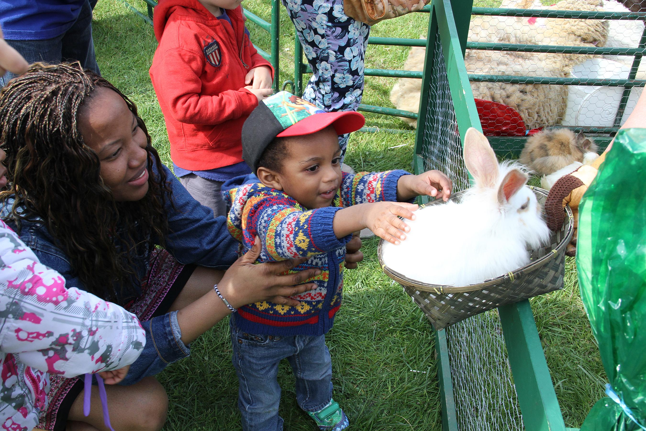 Arbor Fest