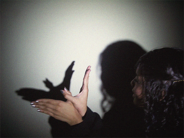 marioneta de sombra de pájaro