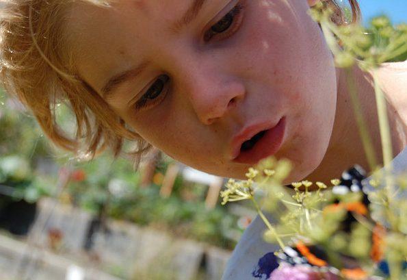 girl butterfly flickr