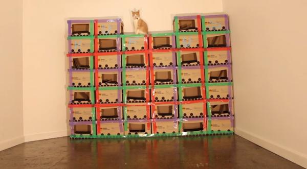 cardboard-petstore