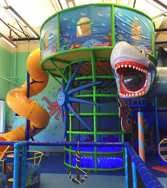 jumpity bumpity shark play structure