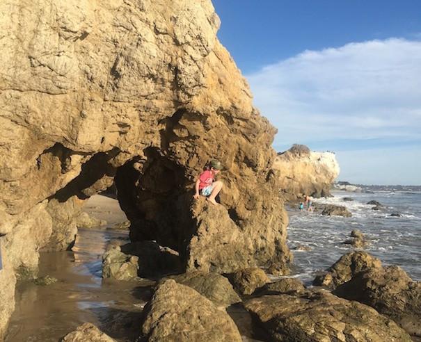 sea cove terranea
