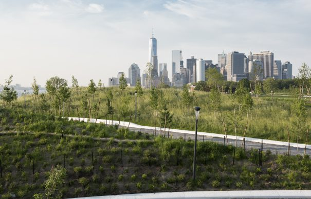 The Hills Governors Island Timothy Schenck 13