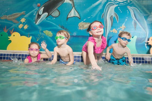 goldfish-swim school