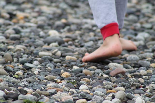 kid rock beach pet rock day