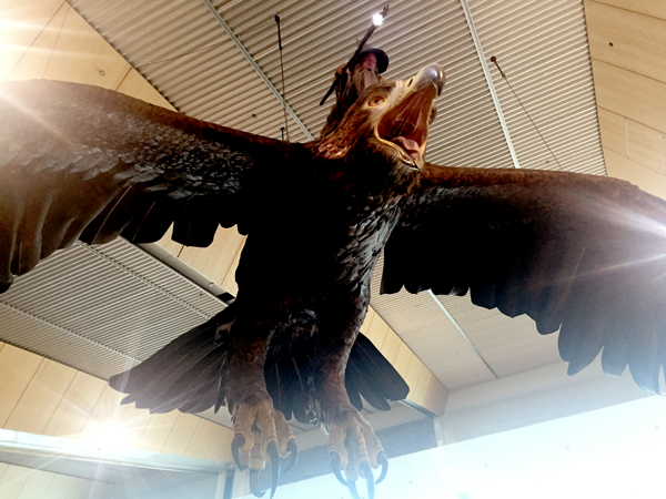Great Eagles with Gandalf at the Wellington Airport in New Zealand