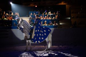 Medieval Times Knights 2