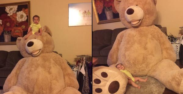 teddybeargrandpa