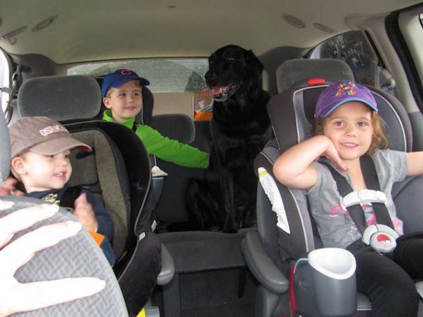 3-kids-in-car-with-dog
