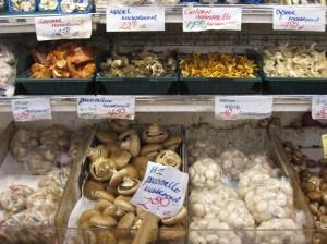 mushroomsbbowl-joshsjackson-flickr