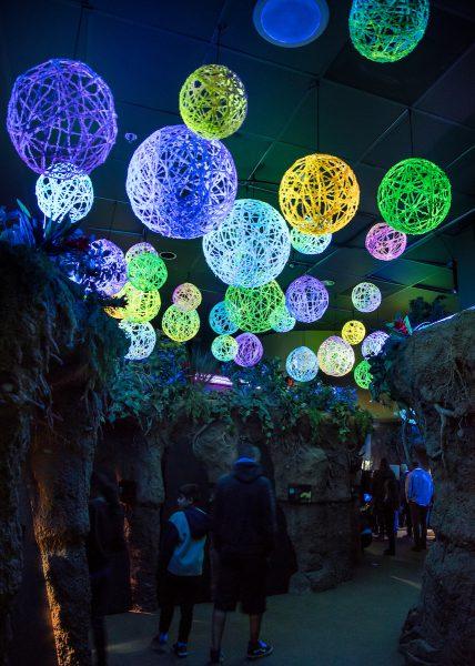 Zoo Lights colorful balls