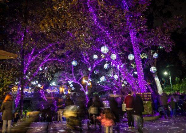 disco-balls-la-zoo-lights