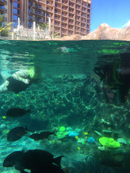 Reef at Aulani, a Disney Resort & Spa