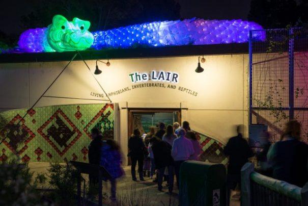 snake-lair-zoo-lights